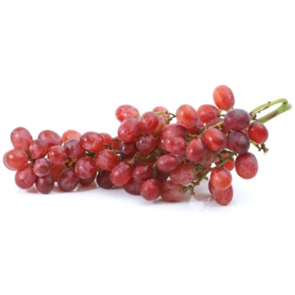 ענב אדום אדורה טלי בוטיק