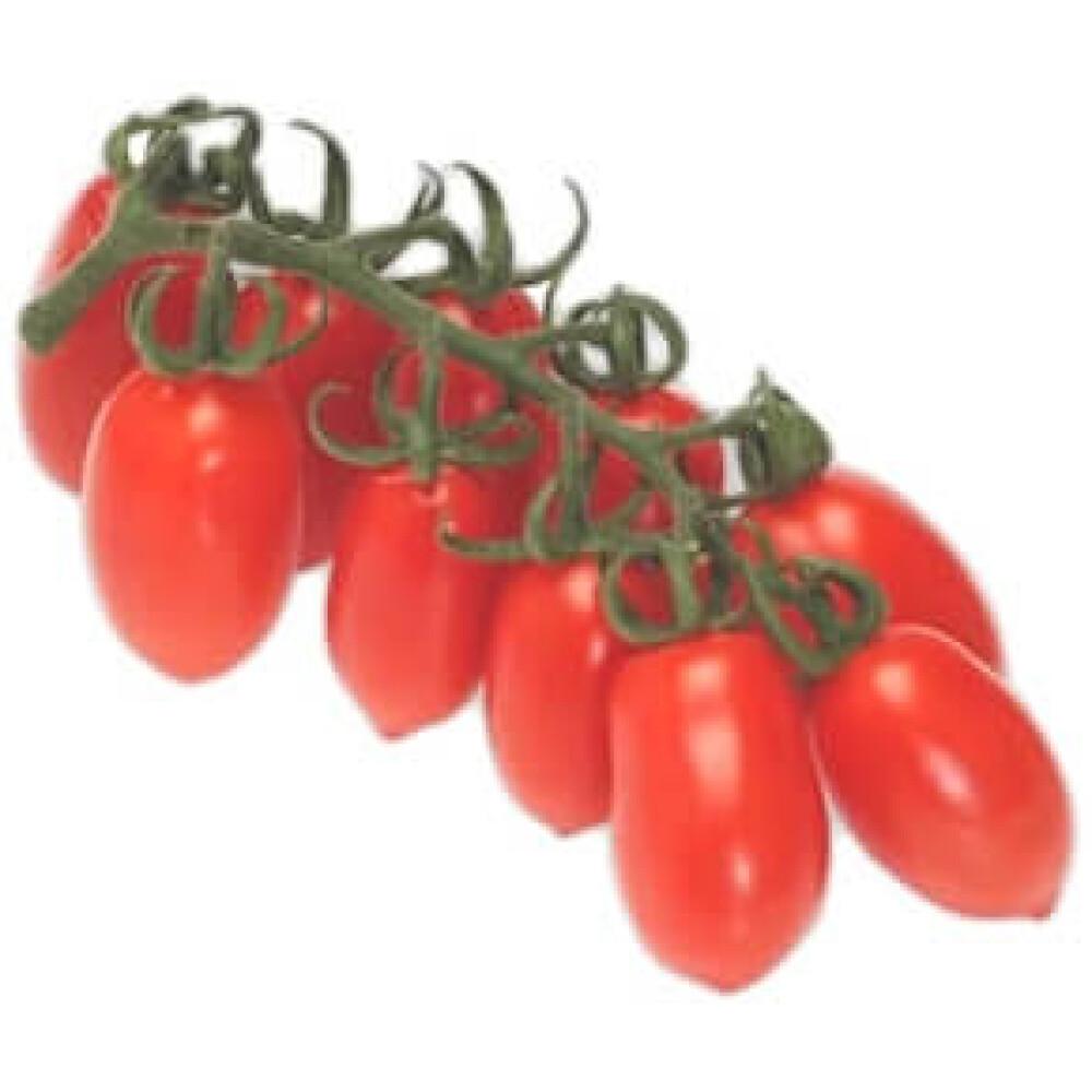 עגבניות שרי תמר