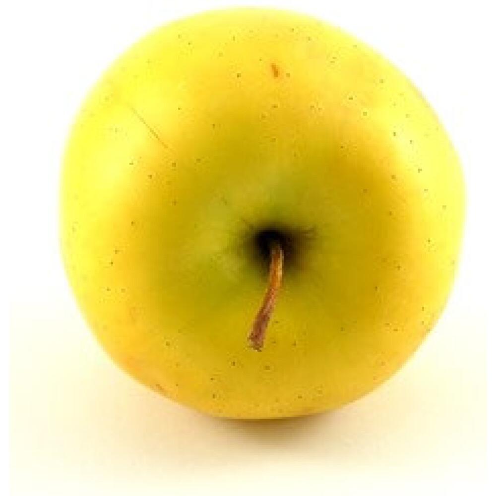 תפוח זהב מובחר