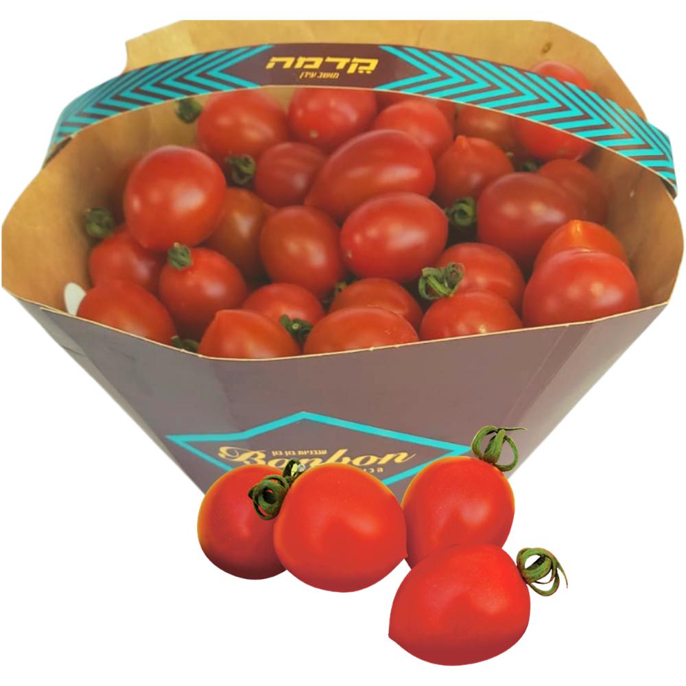עגבניה שרי מתוקה בון בון – קדמה